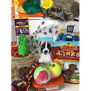 Deluxe Dog Gift Box Basket With 4 Grain Free Gluten Free Treats and 4 Toys For A Favorite Canine Fur Baby Perfect for Dog Lover Dog Birthday Dog Christmas Gift Dog Gift For Furry Pet Friend- Prime