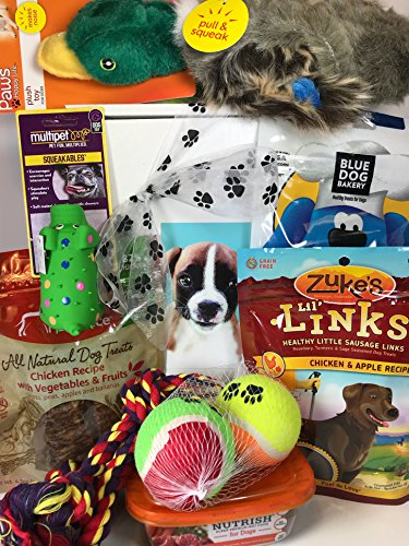 Deluxe Dog Gift Box Basket With 4 Grain Free Gluten Free Treats and 4 Toys For A Favorite Canine Fur Baby Perfect for Dog Lover Dog Birthday Dog Christmas Gift Dog Gift For Furry Pet Friend- Prime (Dog Treat Gift Baskets)