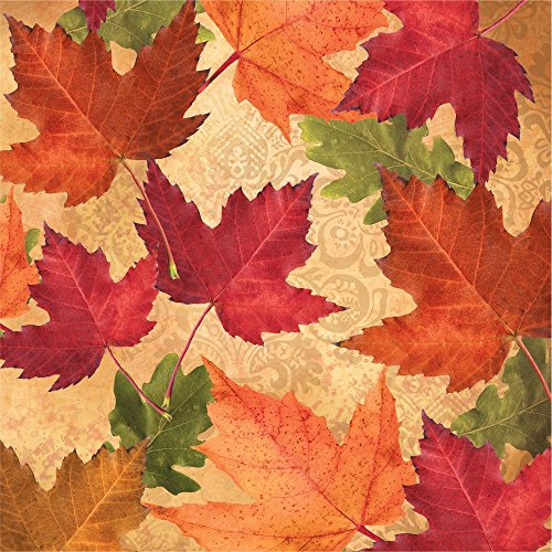 Creative Converting 3-Ply Autumn's Elegance Beverage Napkins, Orange/Red/Green (Napkins Autumn)