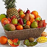 Eshop's Fresh Fruit Basket - Same Day Gift Baskets Delivery - Fresh Fruit Baskets - Fruit Basket Delivery - Organic Fruit Baskets - Best Gift Baskets