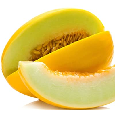 Canary Melon Seeds! SWEET YELLOW VARIETY! COMB. S/H! SEE MY STORE! : Garden & Outdoor