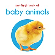 My First Book Of Baby Animals : First Board Book