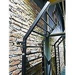 ARTIMEX-spalliera-Svedese-in-Acciaio-per-Ginnastica-e-Fitness-utilizzato-in-Case-palestre-Centri-Fitness-o-allaperto-255×100-cm-codice-221-Gladiator