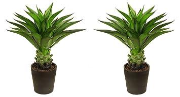 Meilleur Artificielle 80 Cm 09 M Aloe Vera Plante Intérieur