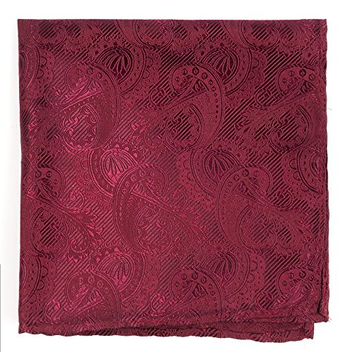 Twill Clip (The Tie Bar 100% Woven Silk Twill Paisley Burgundy Pocket Square)