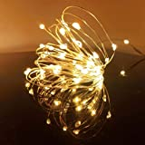 LED Fairy String Lights, 12-Pack 20 Micro Lights On Silver Copper Wire ( Batteries Include) for DIY Wedding Centerpiece…