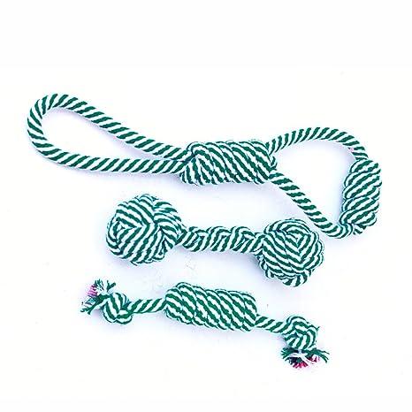 Amazon.com: AAPVP - Juego de juguetes para mascotas con ...