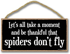 Honey Dew Gifts Funny Sign, Thankful That Spiders Don't Fly 5 inch by 10 inch Hanging Wall Art, Decorative Wood Sign Home Decor