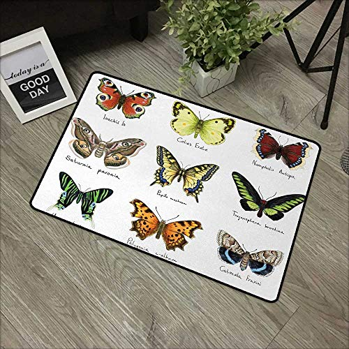 Square Door mat W16 x L24 INCH Butterfly,Watercolor Style Spring Insects Urania Helius Saturnia Pavonia Animal Design,Multicolor with Non-Slip Backing Door Mat Carpet ()