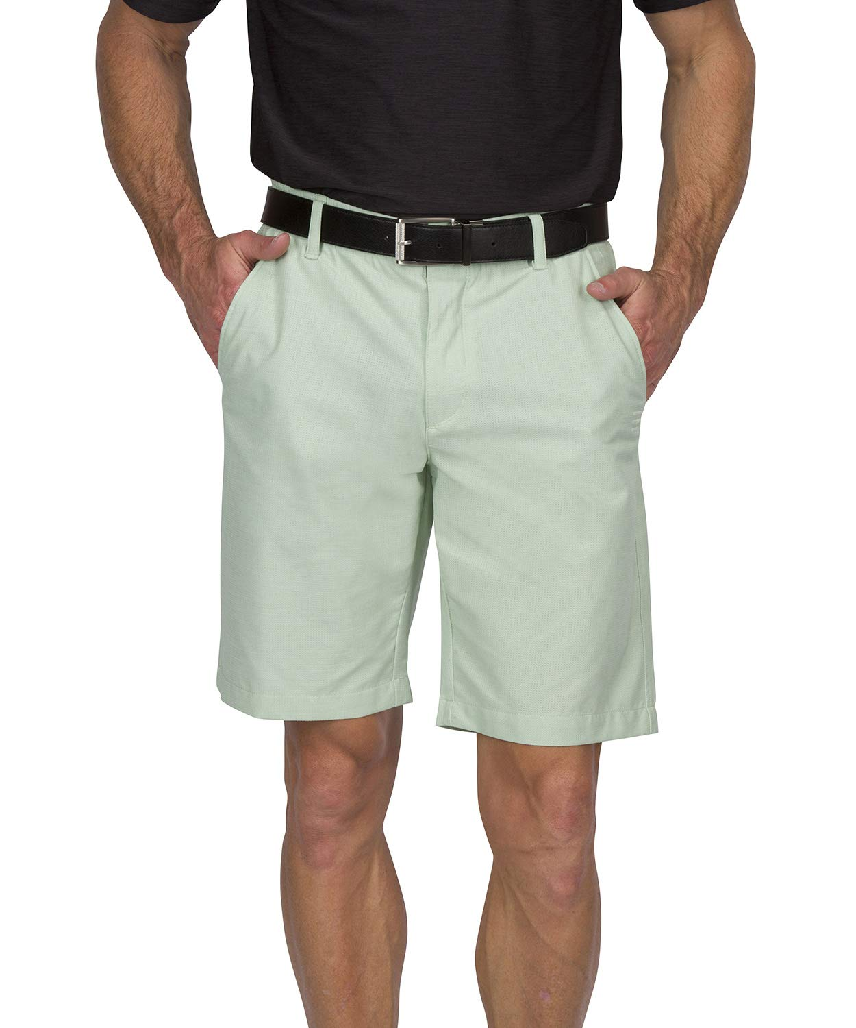 Dry Fit Golf Shorts for Men - Casual Mens Shorts Moisture Wicking - Men's Chino Shorts with Elastic Waistband Sage Green by Three Sixty Six