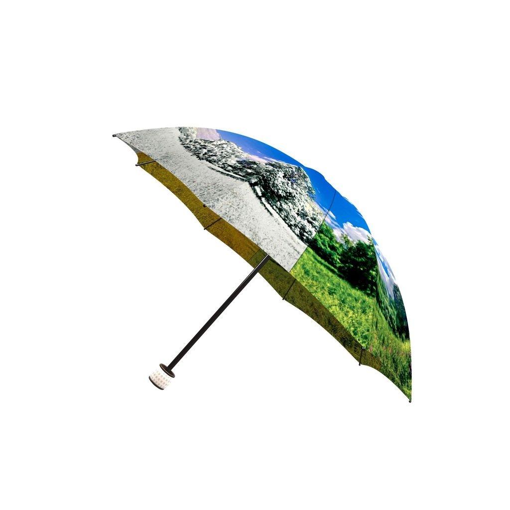 LA BELLA UMBRELLA Four Seasons Designer Unique Art Travel Fashion Umbrella in Stylish Gift Box Windproof Folding Automatic Open Close AUT-011