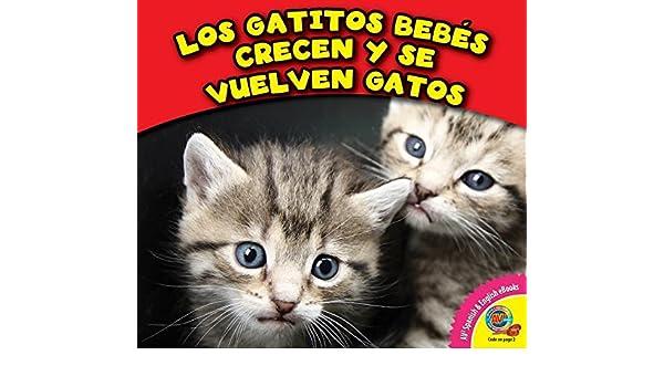 Los Gatitos Bebes Crecen y Se Vuelven Gatos (Los Animales Crecen) (Spanish Edition): Cecilia Minden: 9781489639462: Amazon.com: Books