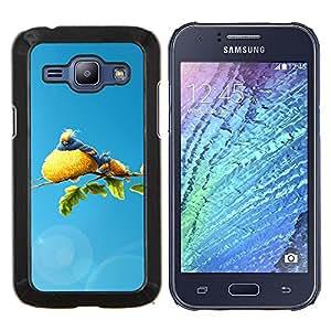 EJOOY---Cubierta de la caja de protección para la piel dura ** Samsung Galaxy J1 J100 ** --Familia linda del pájaro