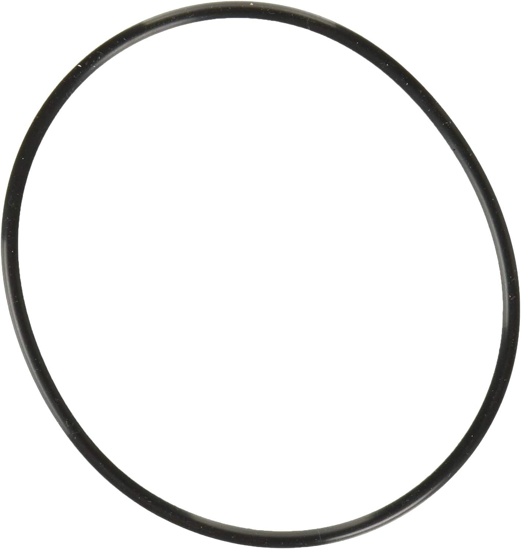 Ametek W34-OR O-Ring for Water Filter
