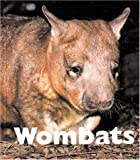 Wombats, Mary Berendes, 1567664822