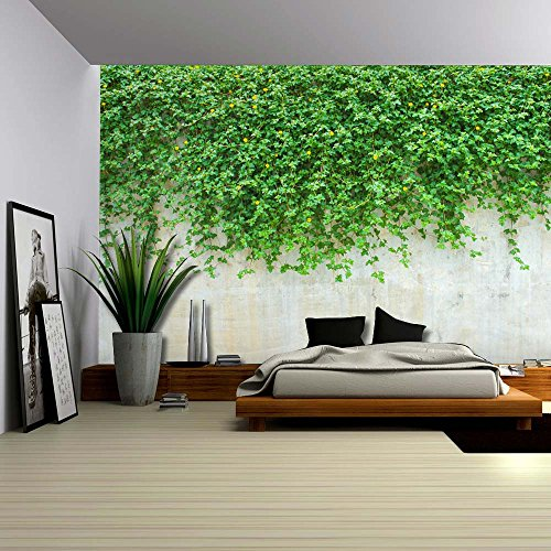Wall26 - Green Vines Dropping to a Cement Wall - Wall Mural, Removable Wallpaper, Home Decor - 66x96 inches