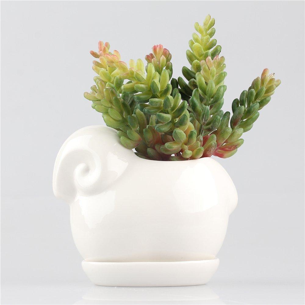 Amazon Ncyp Kawaii Sheep Ceramic Succulent Plant Flower Pot