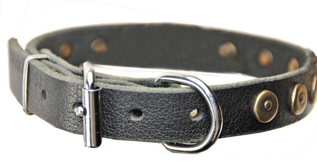 Dean & Tyler Leather Dog Collar  Dot Matrix  High Quality Leather From Europe Size Small 15''-19'' Neck Size 1  Width Black Quality Leather Brass Circles Available in Different Size and color.