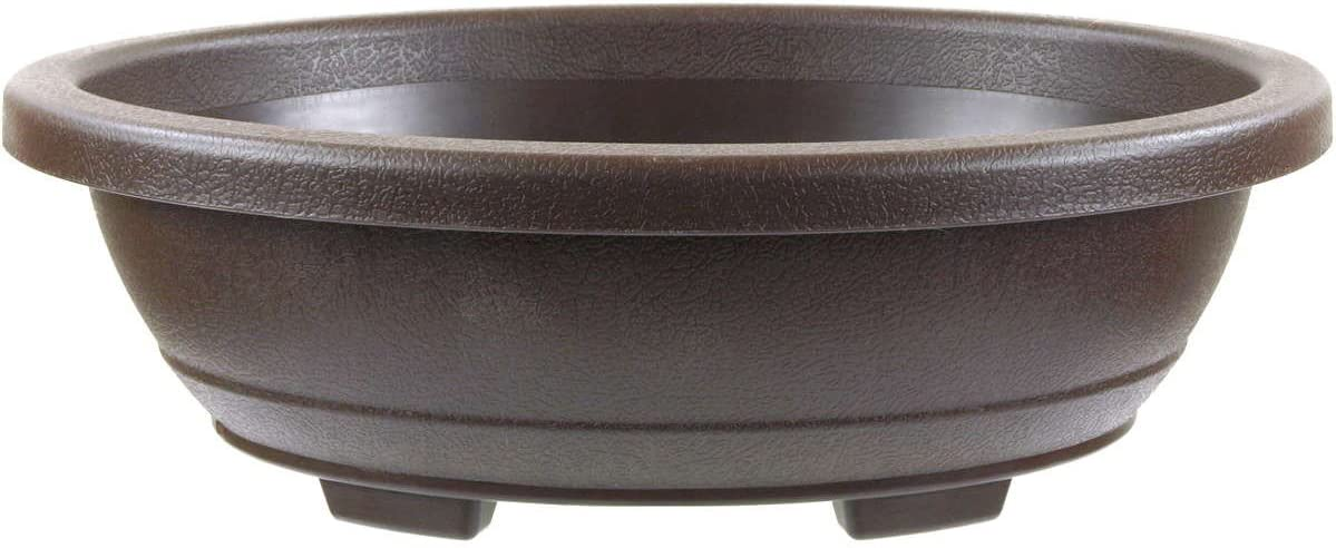 Vaso bonsai 24.3x19.3x8cm marrone scuro ovale plastica
