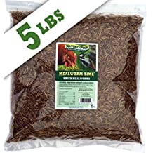 Mealworm Time Dried Mealworms from NaturesPeck (5 lbs) - For Chickens & Wild Birds