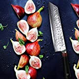 TUO Damascus Kiritsuke Chefs Knife 8.5