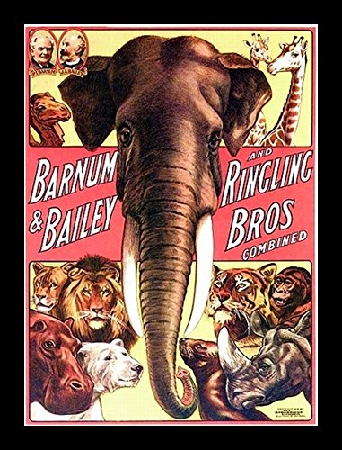 Old Circus Posters - 7