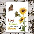 "Set of 25 Sunflower Seed Packet Favors ""Love Is Grown"" Great for Weddings (Autumn Beauty Sunflower Seeds)"