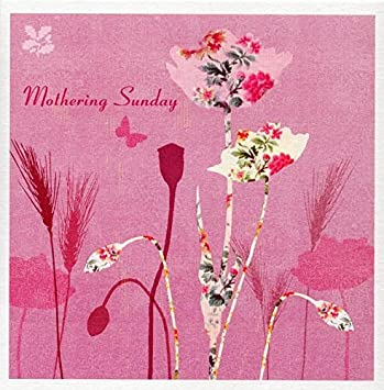 National trust field poppies mothering sunday greeting card mothers national trust field poppies mothering sunday greeting card mothers day cards m4hsunfo