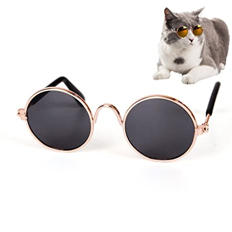 ecff340579 Pawaca cute Pet, classico retrò circolare metallo Prince occhiali da ...