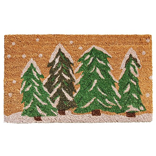 Home & More 122251729 Winter Wonderland Doormat, Multicolor