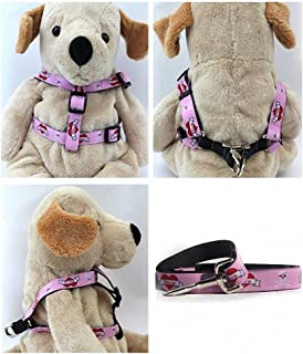 """product image for Diva-Dog 'Valentine' Custom 5/8"""" Wide Dog Step-in Harness with Plain or Engraved Buckle, Matching Leash Available - Teacup, XS/S"""
