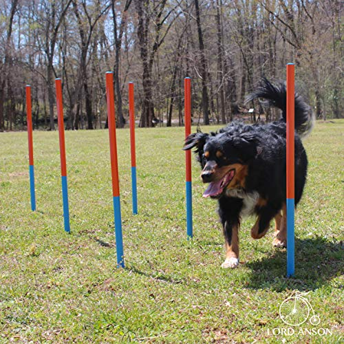 Lord Anson™ Dog Agility Set - Dog Agility Equipment - 1 Dog Tunnel, 6 Weave Poles, 1 Dog Agility Jump - Canine Agility Set for Dog Training, Obedience, Rehabilitation by Lord Anson (Image #2)