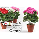 PIANTA PIANTINA FINTA GERANI 37CM COLORI ASSORTITI 685569