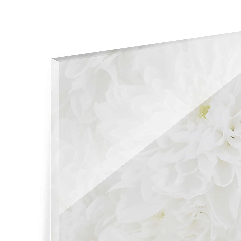 Druck auf Glas Art Wand – – Wand Dahlien Sea Of Blumen weiß – Panorama breit, Druck auf Glas, Glas Druck, Glas Bild, Wandbild, Glas Bild, Wandbild, Glas Wandbild, Glas-, Wandbild, Dimension HxB  30 cm x 80 cm 17b114