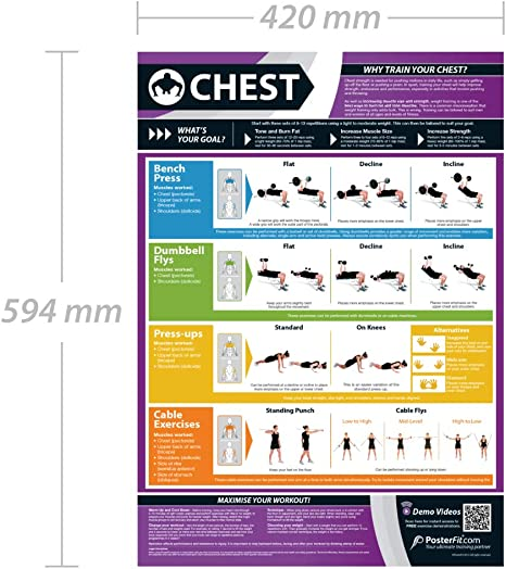 Póster con ejercicios de pecho, formato A3, plastificado, incluye apoyo con vídeos de entrenamiento en línea (solo para smartphones)