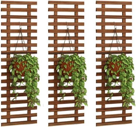 Pared Plantas Colgantes Estantería para Plantas con Montes ...