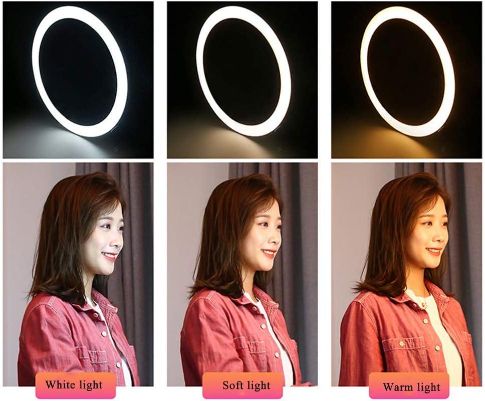Broadcast Live Photography Fill Light Ring Fill Light with 3 Light Modes /& 10 Brightness Level USB YouTube Video Production Light,16cm