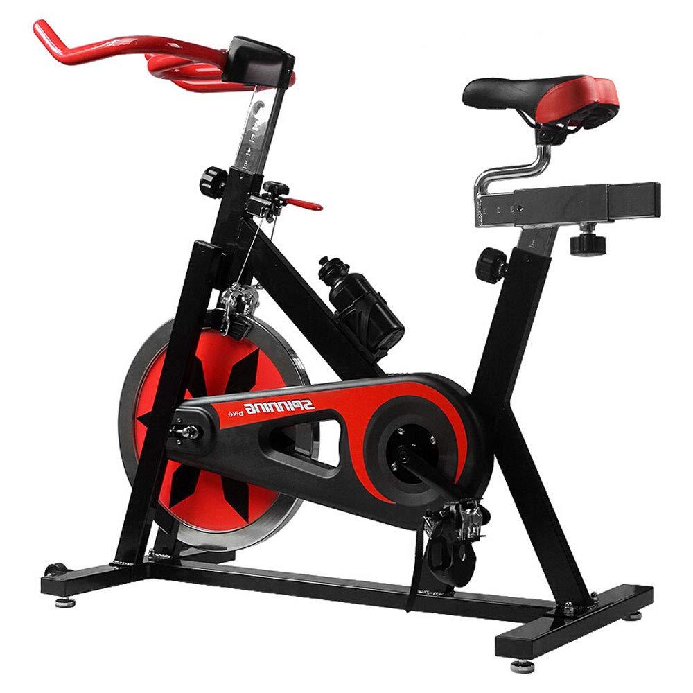 DS Fitnessgeräte Heimliches ständiges Übungs-Fahrrad-aufrechtes Innenbike-Eignungs-Ausrüstung &&
