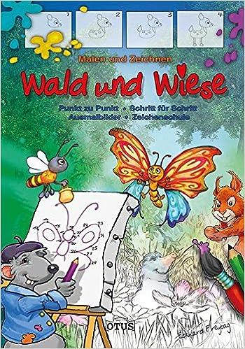 Malen Und Zeichnen Wald Wiese 9783037935002 Amazoncom