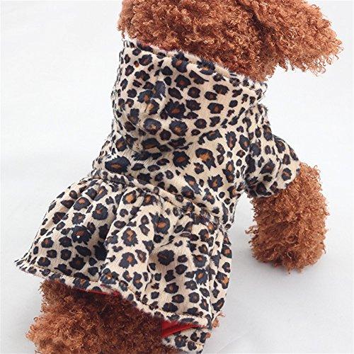 Hoodie Wanyne Compagnia Vestito Confortevoli Dimensioni Leopardo Cotone 16 Da Vestiti 81f8wr
