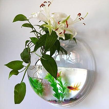 Pet Fish Bowl, acrílico colgante acuario, montado en la pared 1,2 ...