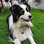 Sacchetti-per-Cani-Mimicool-Sacchetti-Igenici-Deiezioni-Escrementi-Bustine-Cane-con-Dispenser-e-Confezione-da-300