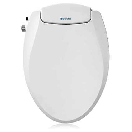 Miraculous Brondell Swash Ecoseat Non Electric Bidet Toilet Seat Fits Elongated Toilets White Dual Nozzle System Ambient Water Temperature Bidet With Easy Andrewgaddart Wooden Chair Designs For Living Room Andrewgaddartcom