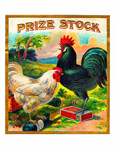A SLICE IN TIME Prize Stock Rooster Chicken Tobacciana Smoke Cigar Tobacco Crate Box Inner Label Advertising 7 x 10 inch Vintage REPRODUCTION Art Print. Printed on 8.5 x 11 soft gloss cardstock
