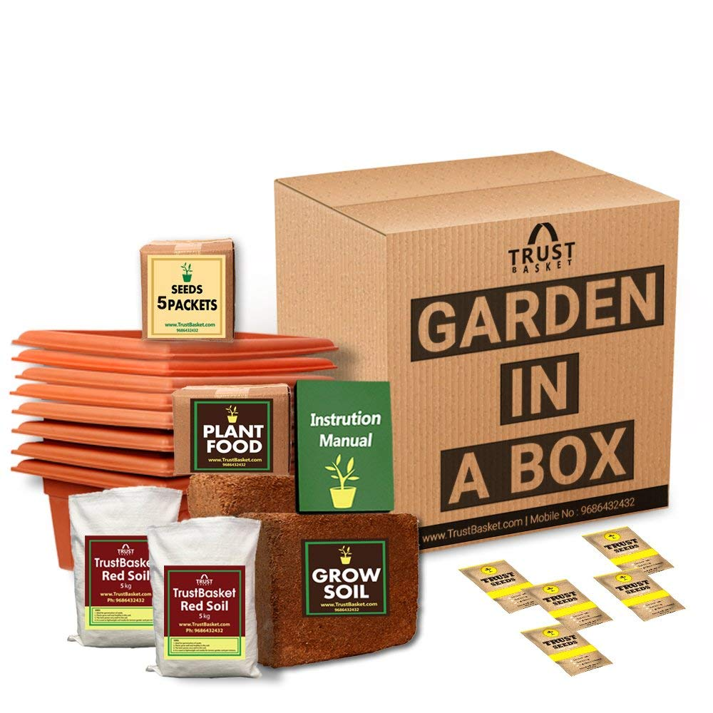 Father day gift- Gardening kit