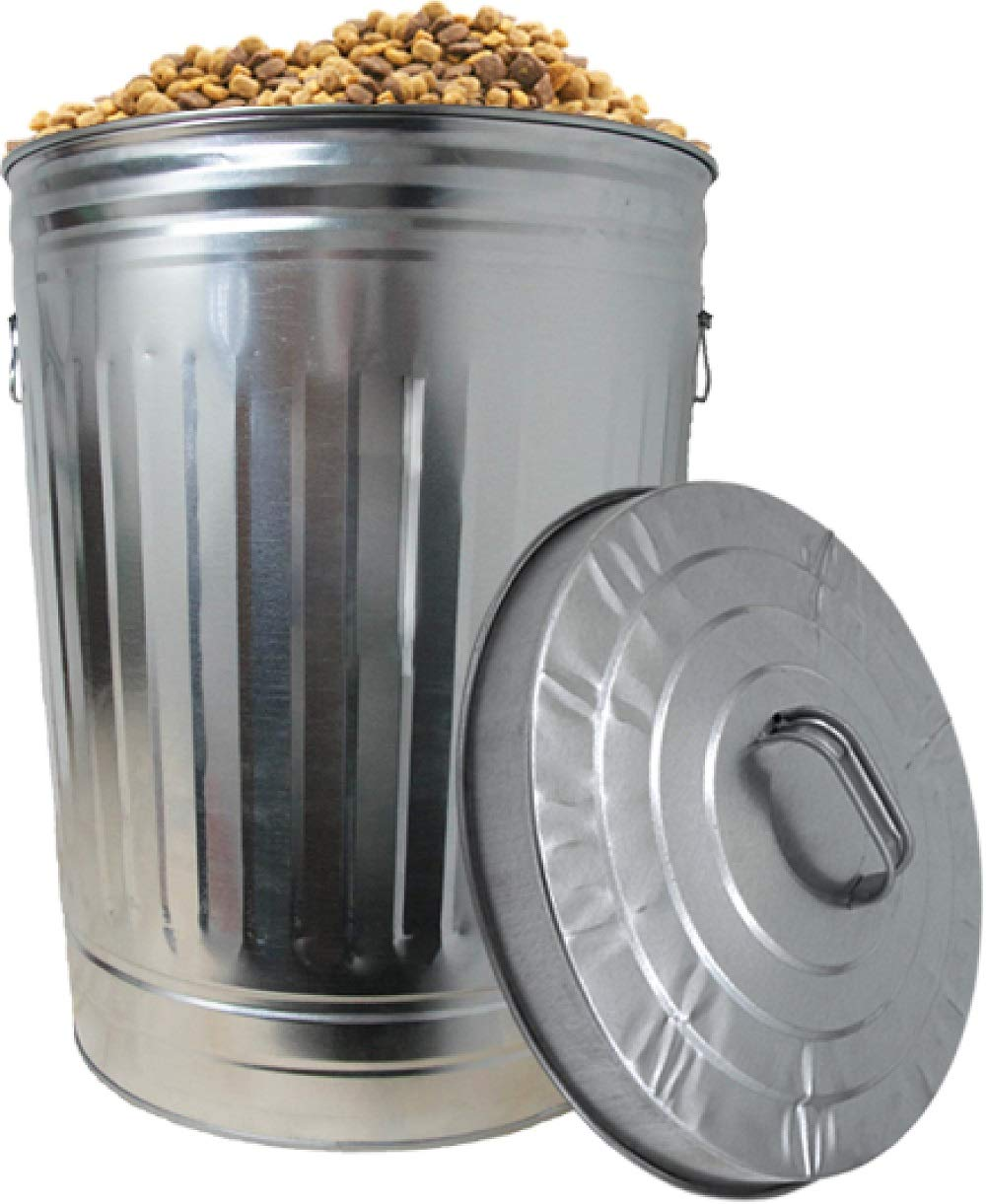 Dover Parkersburg DP1211K Steel Can, 20-Gallon Silver by Dover Parkersburg (Image #4)