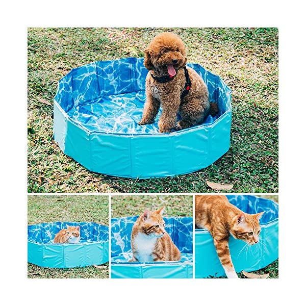 GoPetee Foldable Dog Swimming Pool Puppy Cats Paddling Pool Bathing Tub for Pet Children Kid (Ocean Wave, 80 * 20CM,) 3