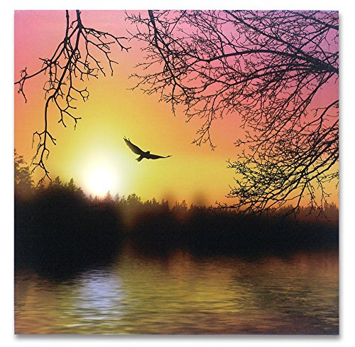 BANBERRY DESIGNS Soaring Eagle LED Lighted Canvas Print Home Decor - Morning Sunrise Wooded Lake Outdoors Scene (Lighted Art Home Wall)