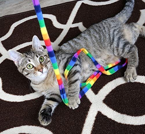Cat Dancer Products Rainbow Cat Charmer 3