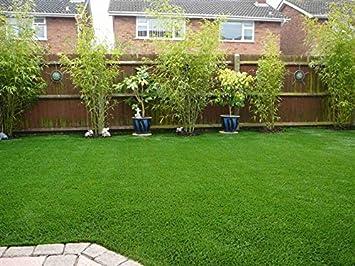 Astro Turf Garden >> Artificial Lawn 3 3 X 5 Artificial Grass Indoor Outdoor Landscape Pet Dog Area Green